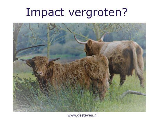 Impact competentie?