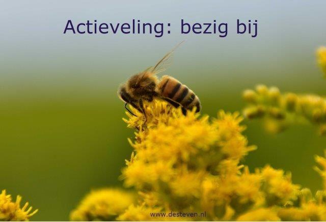 Actieveling of bezige bij