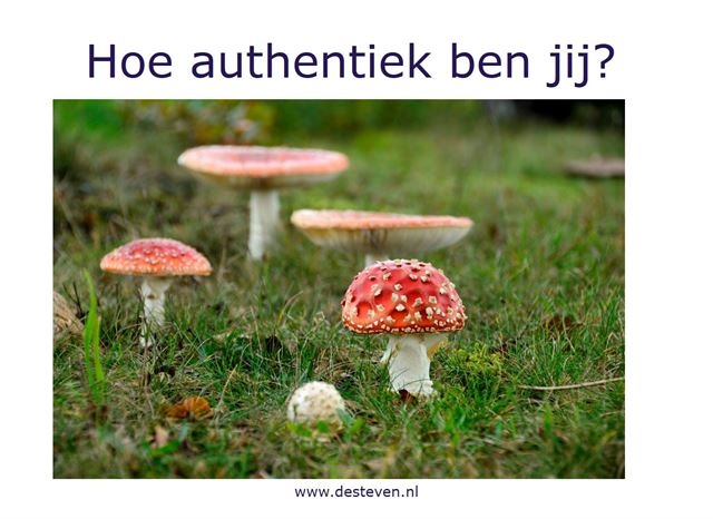 Hoe authentiek ben jij?
