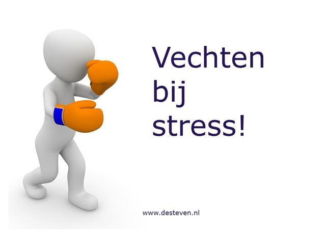 Vechten als reactie op stress