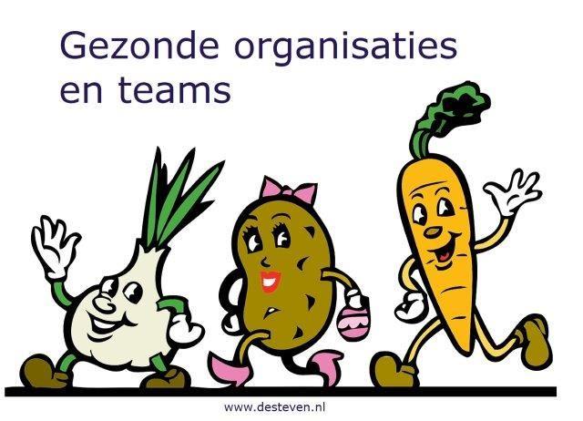 Gezonde organisaties en teams