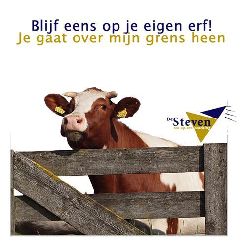 Cursus assertiviteit: Appingedam, Eemshaven, Delfzijl, Groningen, Haren, Hoogezand, Stadskanaal, Ter Apel,Veendam, Vlagtwedde, Winschoten, Zuidbroek of  Zuidhorn