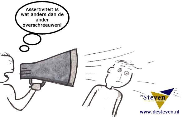 Training assertiviteit in Friesland: Beetsterzwaag, Bolsward, Burgum, Dokkum, Drachten, Gorredijk, Heerenveen, Franeker, Harlingen, Joure, Leeuwarden, Lemmer of  Sneek