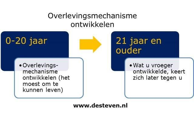 Overlevingsmechanisme en overlevingsstrategie