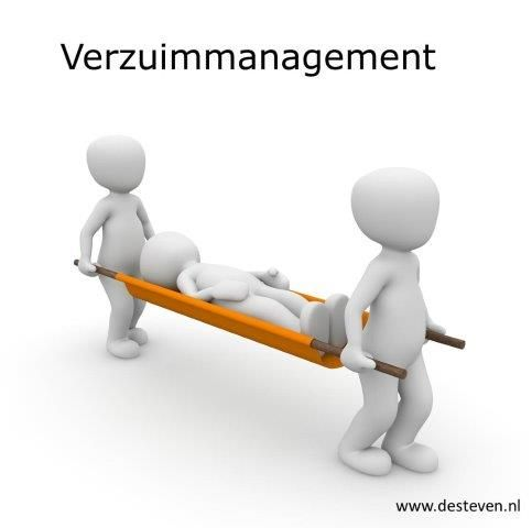 Verzuimmanagement