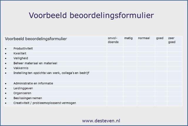 Voorbeeld beoordelingsformulier