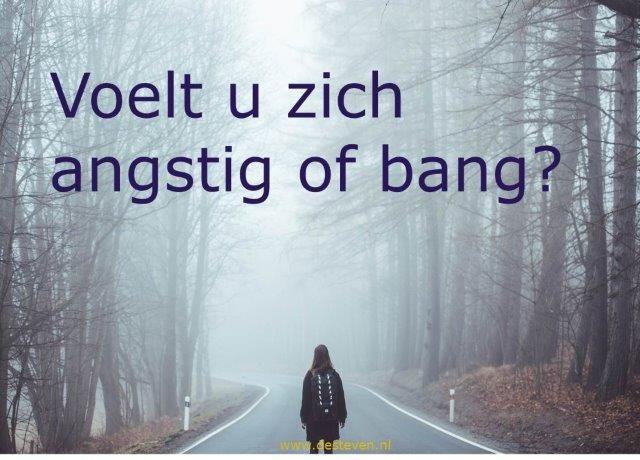 Angstig of bang