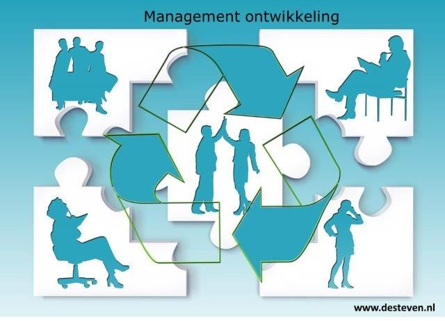 Managementontwikkeling en Management development