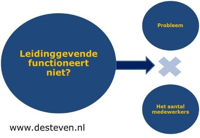 Disfunctioneren leidinggevende of manager