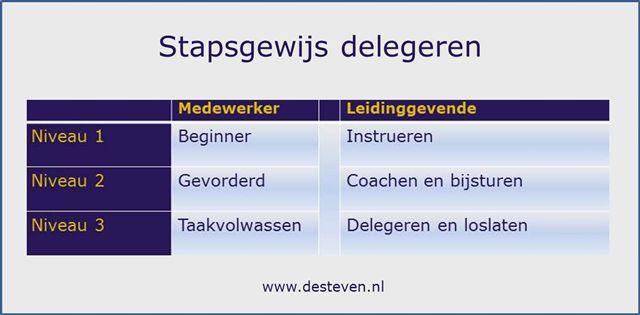 Niveaus van delegeren