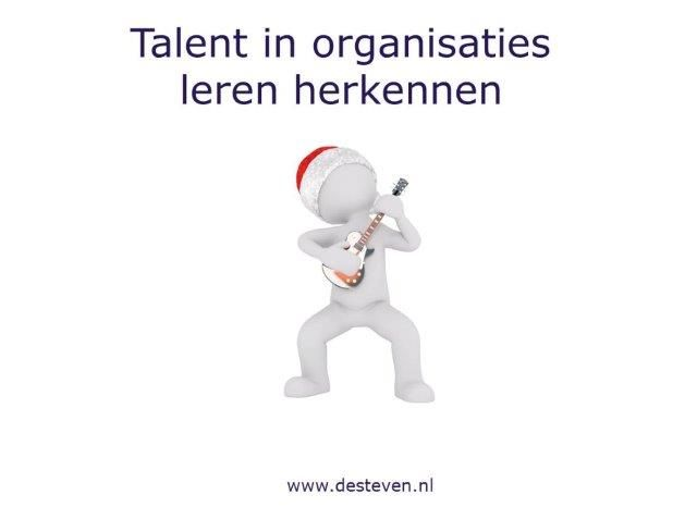 Talent in organisaties herkennen