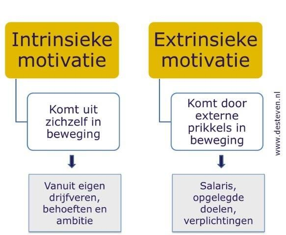 Extrinsieke motivatie