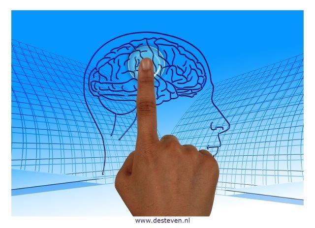 Jouw potentieel en ontwikkelpotentieel leren kennen?