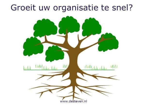 Te snelle groei organisatie of onderneming