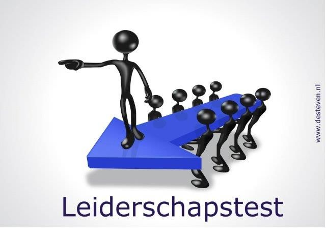 Leiderschapstest online